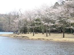 一碧湖1.jpg